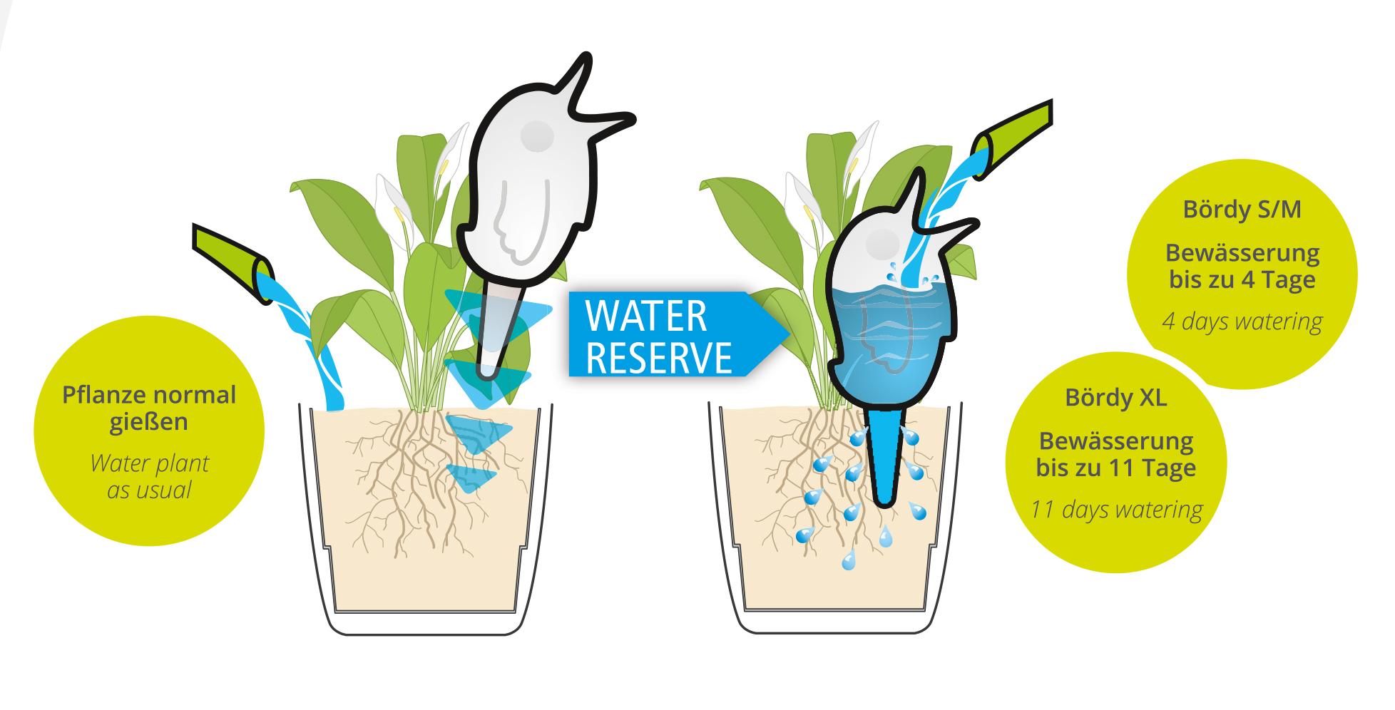 Duży Ptaszek Dozujący Wodę Do Roślin Domowych Boerdy Xl Zielony